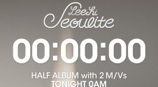 leehi_half-album_counter